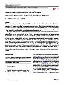 Active methods of mercury removal from flue gases - Springer Link