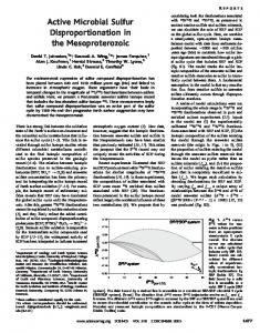 Active Microbial Sulfur Disproportionation in the Mesoproterozoic