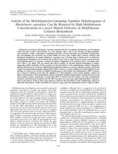 Activity of the Molybdopterin-Containing Xanthine Dehydrogenase of ...