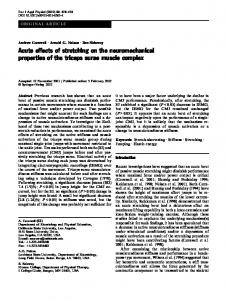 Acute effects of stretching on the neuromechanical ... - Springer Link