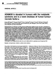 ADAM28 is elevated in humans with the metabolic syndrome ... - Nature