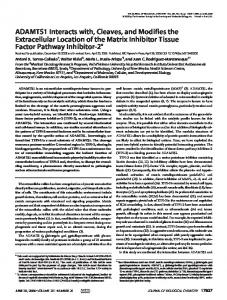 ADAMTS1 Interacts with, Cleaves, and Modifies the Extracellular ...