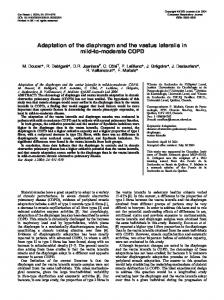 Adaptation of the diaphragm and the vastus ... - Semantic Scholar