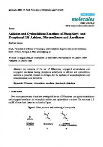 Addition and Cycloaddition Reactions of Phosphinyl