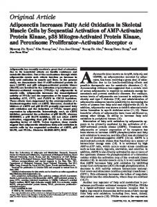 Adiponectin Increases Fatty Acid Oxidation in Skeletal Muscle Cells by ...