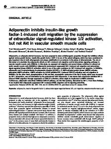 Adiponectin inhibits insulin-like growth factor-1-induced cell ... - Nature