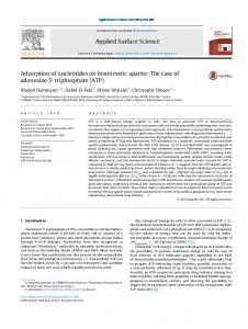 Adsorption of nucleotides on biomimetic apatite