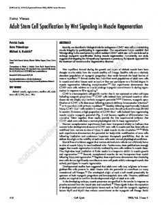 Adult Stem Cell Specification by Wnt Signaling in Muscle Regeneration