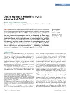 Aep3p-dependent translation of yeast mitochondrial ATP8