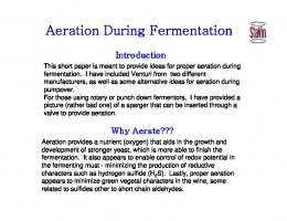 Aeration During Fermentation - StaVin