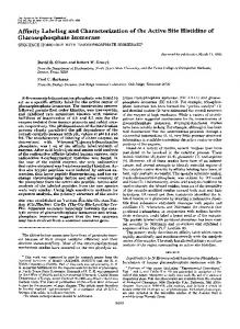 Affinity Labeling and Characterization of the Active ... - Semantic Scholar
