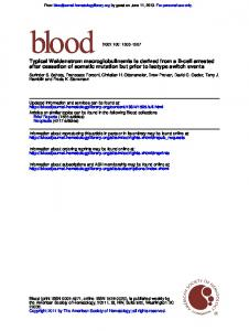 after cessation of somatic mutation but prior to isotype ...