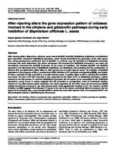 After-ripening alters the gene expression pattern of ... - Oxford Academic