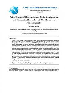 Aging Changes of Macromolecular Synthesis in