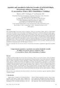 Agonistic and reproductive behaviors in males of red hybrid tilapia ...