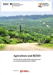 Agriculture and REDD+ - The REDD Desk