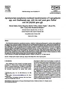 Agrobacterium tumefaciensmediated ... - Wiley Online Library