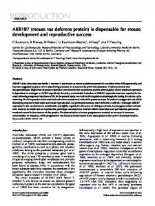 AKR1B7 (mouse vas deferens protein) is dispensable for mouse ...