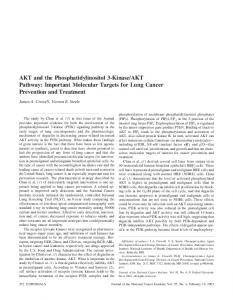 AKT and the Phosphatidylinositol 3-Kinase/AKT ... - Oxford Journals
