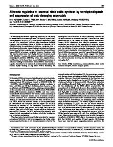 Allosteric regulation of neuronal nitric oxide synthase ... - Europe PMC