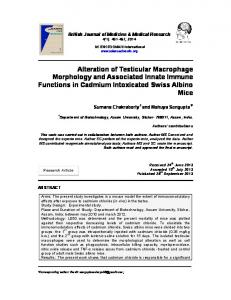 Alteration of Testicular Macrophage Morphology and