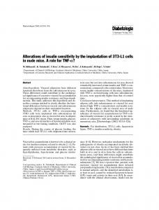Alterations of insulin sensitivity by the implantation of ... - Springer Link