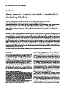 Altered Neuronal Excitability in Cerebellar Granule Cells of Mice ...