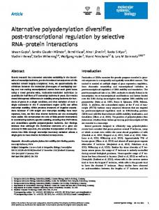 Alternative polyadenylation diversifies ... - BioMedSearch