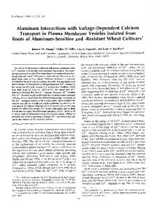 Aluminum lnteractions with Voltage-Dependent ... - Plant Physiology