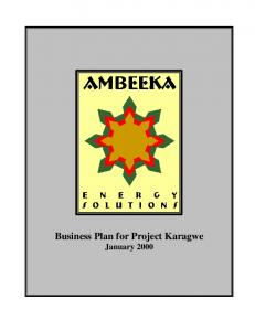 Ambeeka Business Plan