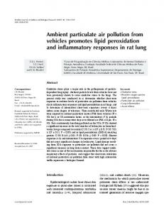 Ambient particulate air pollution from vehicles