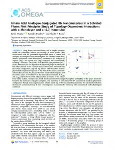 Amino Acid Analogue-Conjugated BN ... - ACS Publications