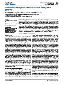 Amino acid transporter inventory of the Selaginella genome - Frontiers