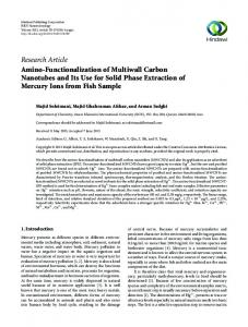 Amino-Functionalization of Multiwall Carbon Nanotubes and Its Use