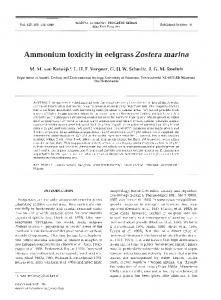 Ammonium toxicity in eelgrass Zostera marina - Inter Research
