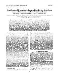 Amplification of Hypoxanthine-Guanine ... - Europe PMC