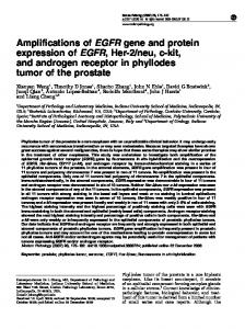 Amplifications of EGFR gene and protein expression of EGFR ... - Nature