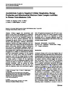 Amyloid-beta Leads to Impaired Cellular Respiration ... - Springer Link