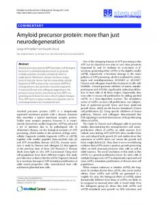 Amyloid precursor protein: more than just ... - BioMedSearch