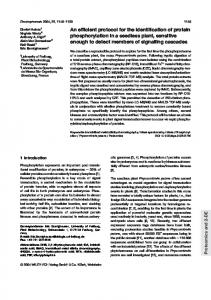 An efficient protocol for the identification of protein ... - Semantic Scholar
