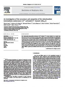 An investigation of the occurrence and properties of the mitochondrial ...