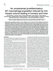 An unrestrained proinflammatory M1 macrophage