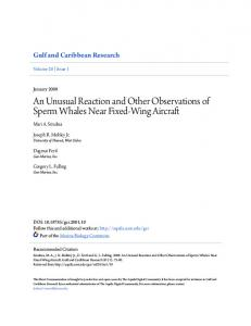 An Unusual Reaction and Other Observations of Sperm Whales Near ...