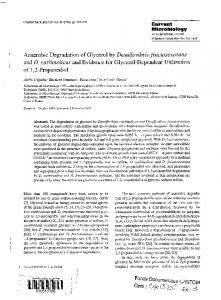 Anaerobic degradation of glycerol by Desulfovibrio fructosovorans and ...