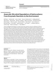 Anaerobic Microbial Degradation of Hydrocarbons