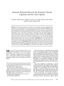 Anatomic Relation Between the Posterior Cruciate Ligament and the ...