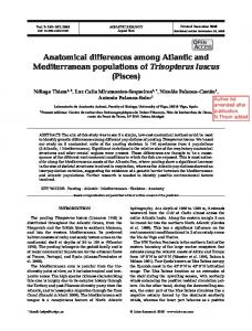 Anatomical differences among Atlantic and ... - Inter Research