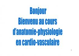 anatomie et physiologie cardio-vasculaire
