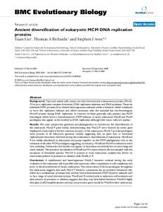 Ancient diversification of eukaryotic MCM DNA replication proteins ...