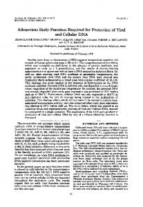 and Cellular DNA - Journal of Virology